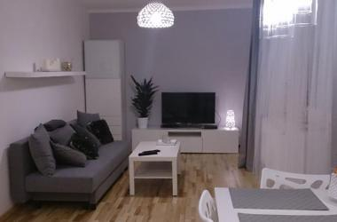 1 bedroom city center apartment