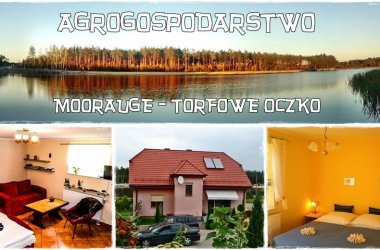 Agrogospodartwo Moorauge - Torfowe Oczko