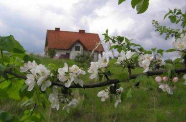 Agroturystyka Wichrowe Wzgórze