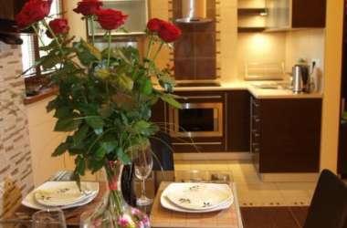 Apartamet górska rosa