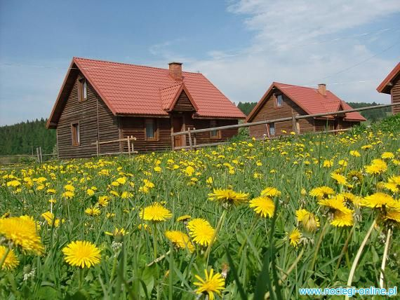 Całoroczne domki w górach