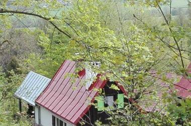 Dom Pod Ptasznicą