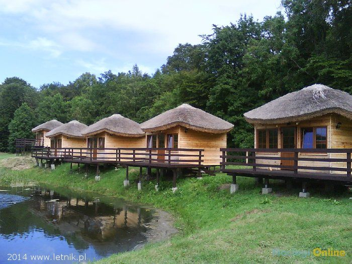 Domki drewniane pod lasem
