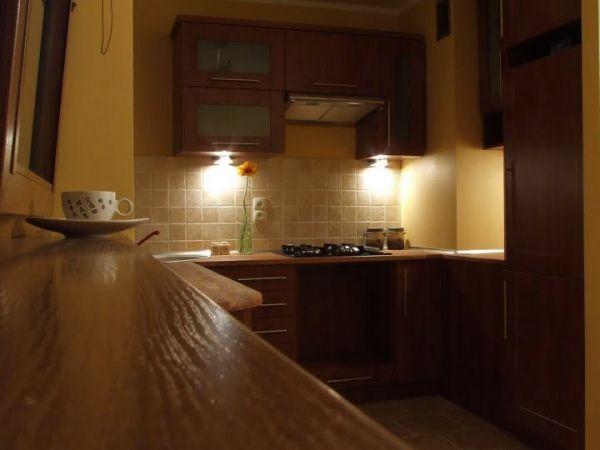 Nocleg we Wrocławiu: Apartament BonsaiTree