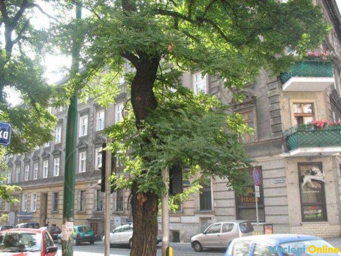 Apartament w Dobrym Miejscu