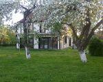 W jabłoniowym sadzie