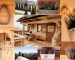 KUBUŚ - Pokoje Gościnne, Domek, Apartament