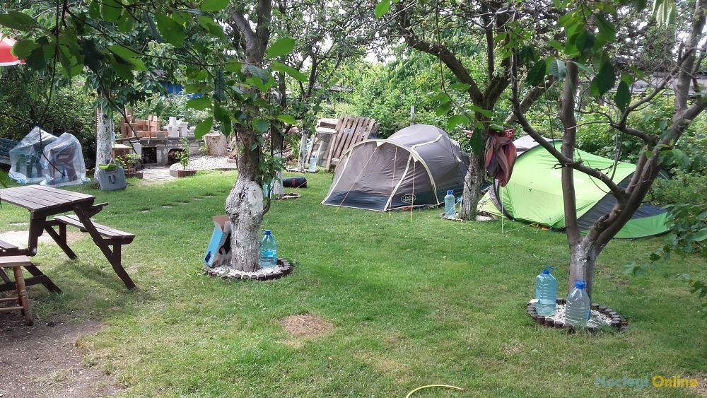 Pole namiotowe OAZA - u Foresta