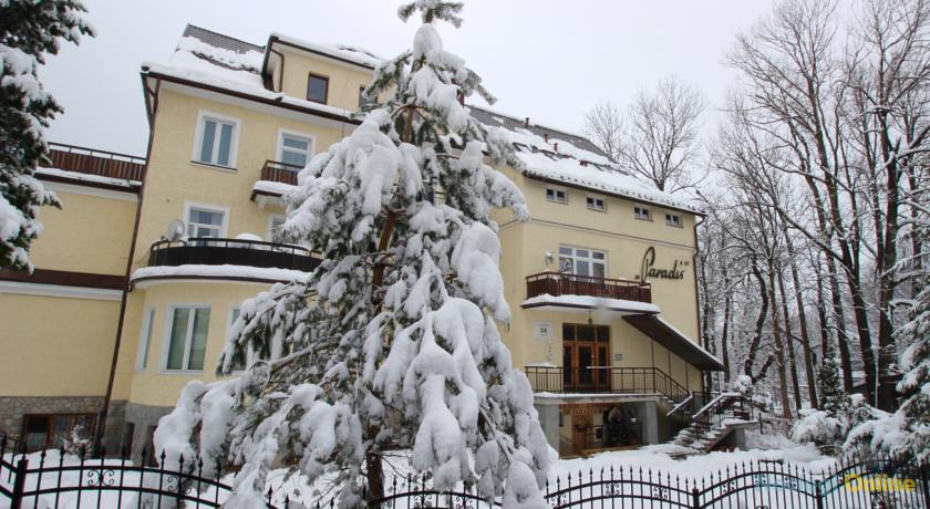 Apartament Stokrotka