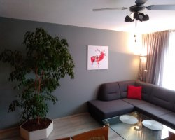 Apartament Domotel TM LUX