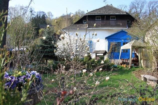 Dom Michalskiego