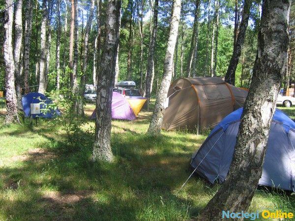 Camping Leśne