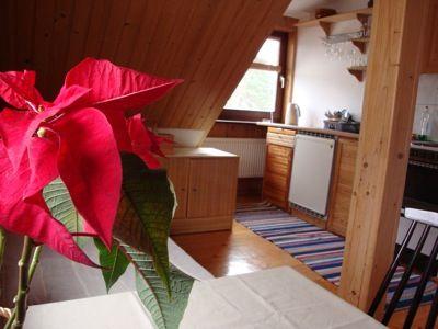 Przytulne mieszkanie z sauną, na poddaszu