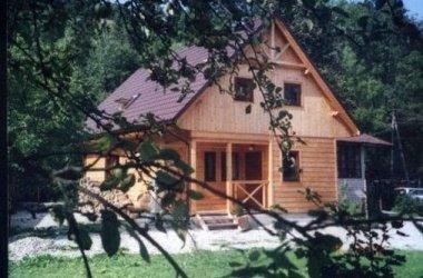 Dom z drewna w górach