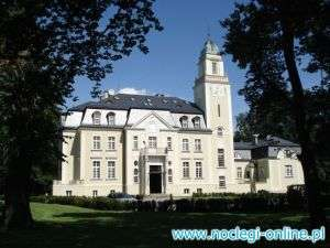 Pałac Borowa ****