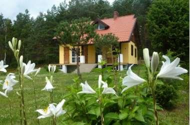 Dom nad jeziorem wynajmę dla rodziny z dziećmi