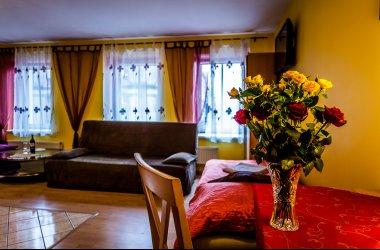 Aparthouse Katowice w centrum