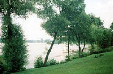 Oaza nad jeziorem