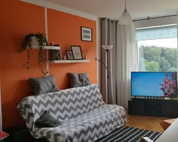 Orange wynajem mieszkania