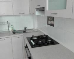 Penguin Rooms 2220