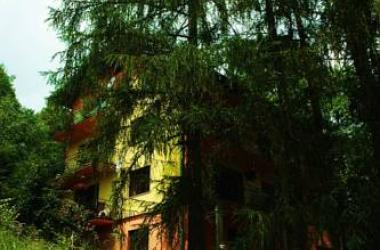 Raj Muszyna Apartamenty z widokiem na panoramę górską